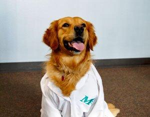 Lola in Lab Coat